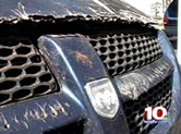 REptilian damage to auto parked near Oak Ridge facility