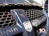 REptilian damage to auto parked near Oak Ridge facility