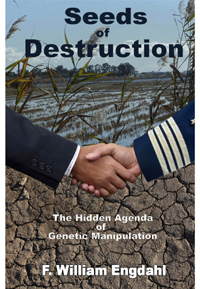 Sees of Destruction book cover