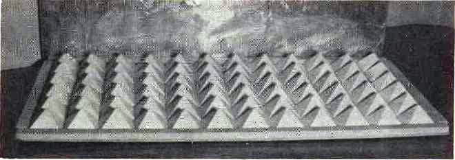72 pyramid energizer tray